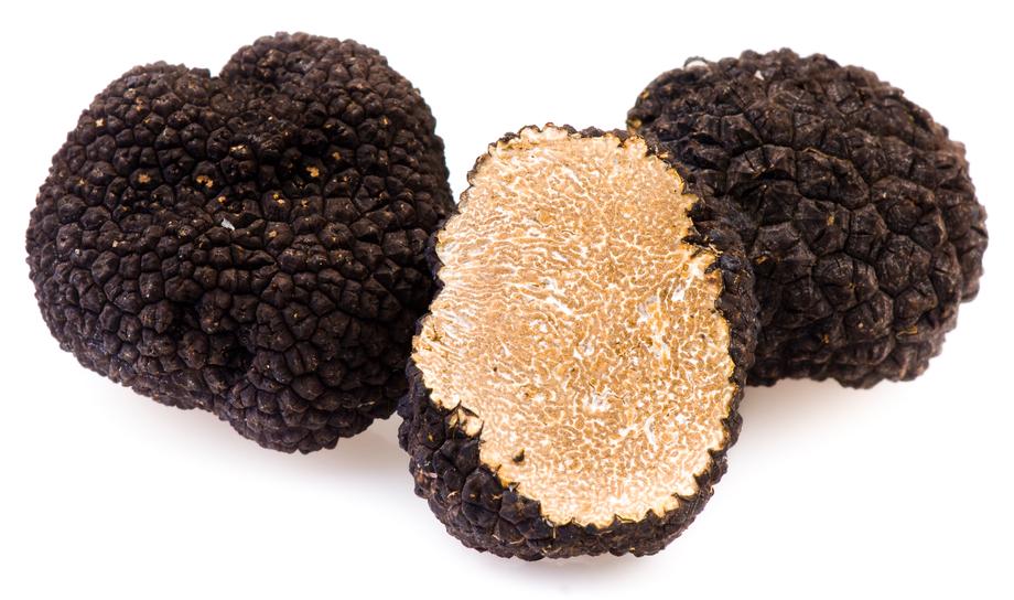 Schwarze Trüffel Pilze kaufen